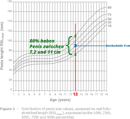 Penisgröße mit 13 Jahren - (Gesundheit, Medizin, Körper)