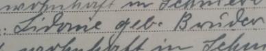 suterlin - (Stammbaum, Familienstammbaum, alte schrift)