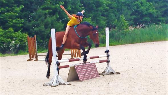 100 cm Stange ohne Sattel und Trense - (Pferde, reiten, Sattel)