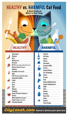 - (Gesundheit, Katze, Nahrung)