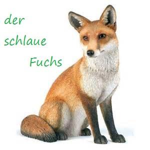 - (Schule, Ausbildung, Abitur)