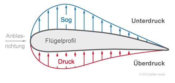 Wieso kann gravitation die kleinste fliege nicht am for Was macht man gegen kleine fliegen in der blumenerde