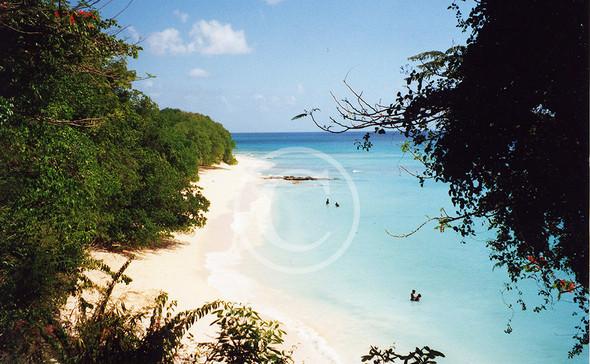 Barbados Westküste - (Urlaub, Genuss, Karibik)