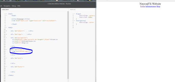- (programmieren, Website, html)