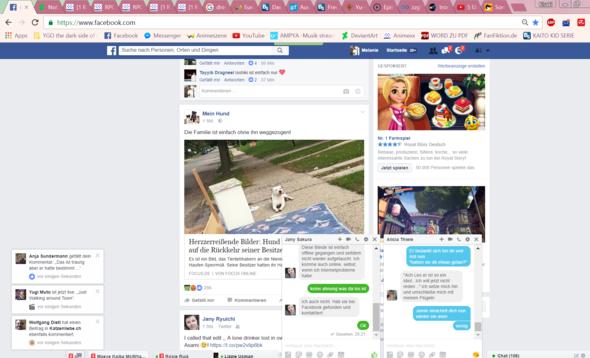 Meldungen - (PC, Facebook)