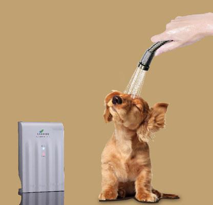 In 10 Sekunden Geruch beseitigen - (Hund, Pflege, Hygiene)