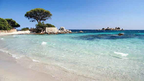 Korsika - (Urlaub, Reise, Deutschland)