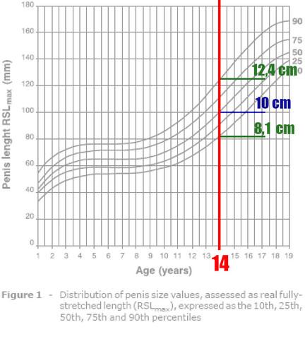 Penisgröße mit 14 Jahren - (Gesundheit, Sexualitaet, Penis)