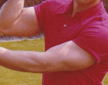 Kraft - (Fitness, Training, Bizeps)