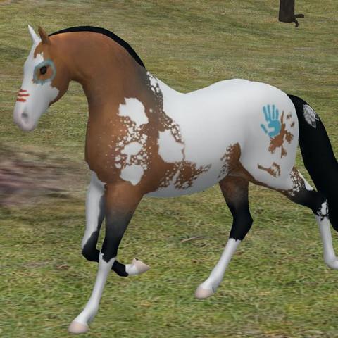 Pferdespiele Wo Man Reiten Kann