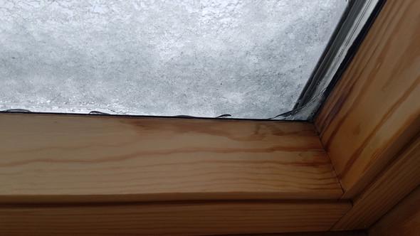 - (Haus, Fenster, Glas)