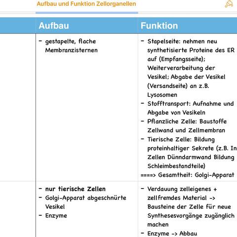 Nett Zellmembran Struktur Und Funktion Arbeitsblatt Antworten ...