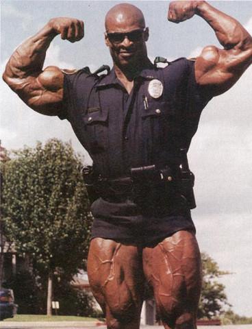 - (Recht, Polizei, Muskeln)