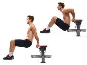 - (Sport, Fitness, Training)