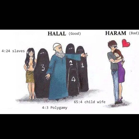 halal - haram - (Islam, Kopftuch, erste mal sex)