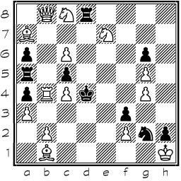 - (Schach, Problemschach)