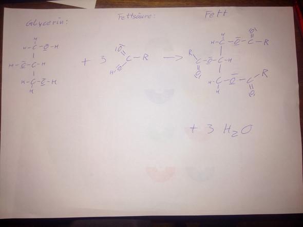 - (Schule, Chemie, fett)