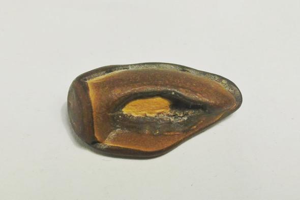 ist dieses fossil eine nuss oder vielleicht sogar ein versteinertes ei und was w re so etwas. Black Bedroom Furniture Sets. Home Design Ideas