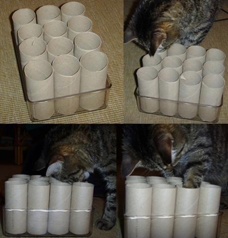 Katzenspielzeug selber basteln wer hat gute ideen - Kalender selber machen ideen ...