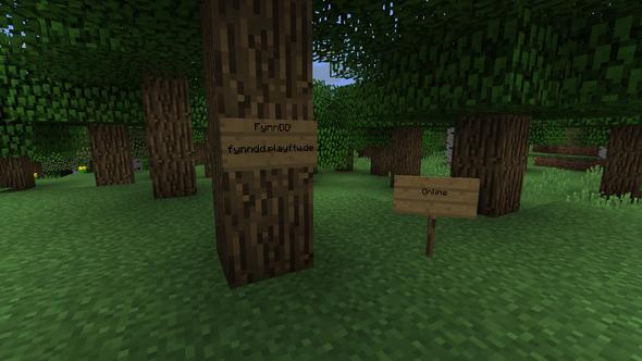 - (Minecraft, youtuber, server IDs)