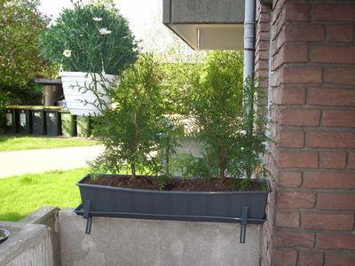 Balkonrechts - (Garten, Balkon)