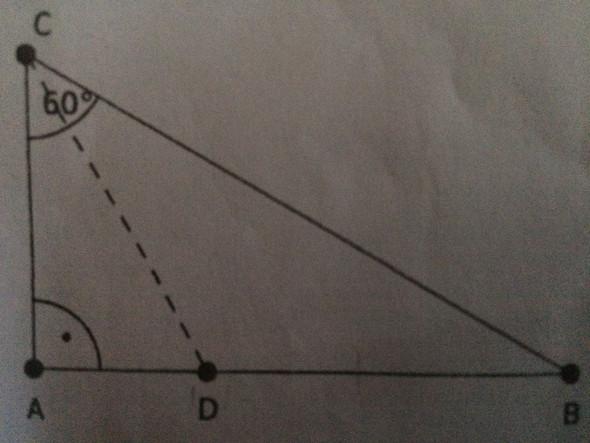 - (Mathematik, Dreieck)