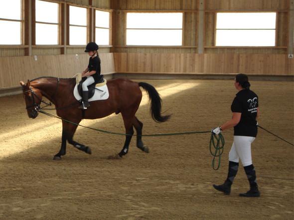 Reitanfänger Unterricht - (Freizeit, Angst, Pferde)