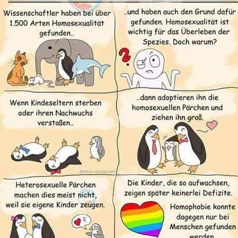 Im Tierreich  - (Tiere, Sexualitaet)