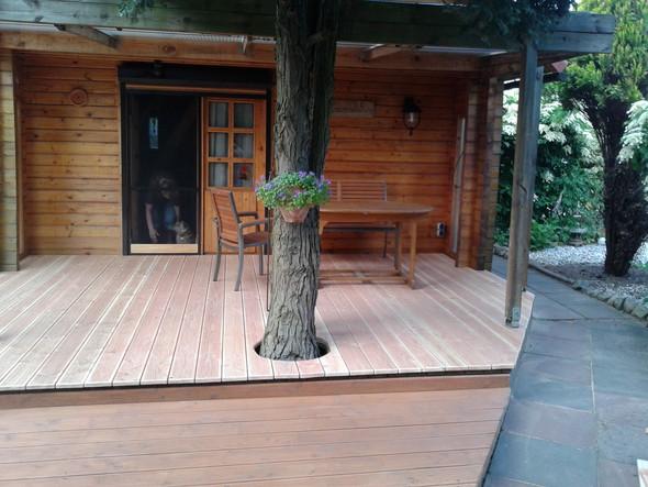 ich will eine terrasse verlegen im garten meiner eltern lieber douglasie billig oder teak. Black Bedroom Furniture Sets. Home Design Ideas