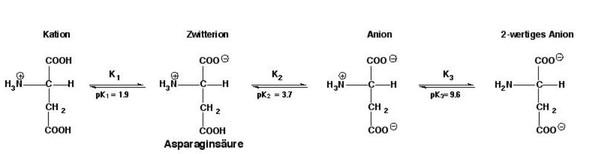 - (Chemie, Aminosäuren, Säure-Base-Reaktion)