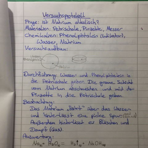 Hier ist ein Beispiel - (Schule, Bio, versuchsprotokoll)