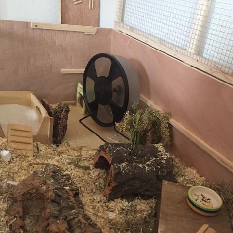 Mein Teddy Gehege - (Hamster, Infos)