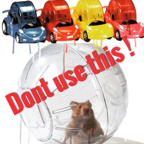 Jogingbälle sind voller Stress. Lieber Auslauf. - (Hamster, Infos)