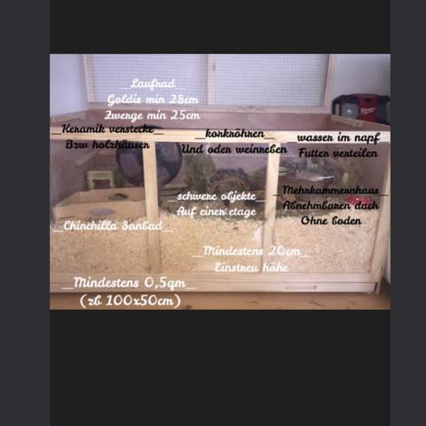 Daten für Hamster  - (Hamster, Spielzeug, Nager)
