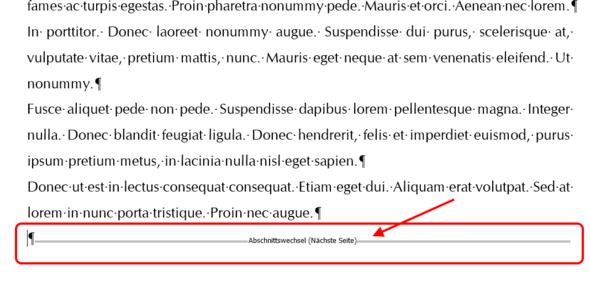 Bild 3: Ein Abschnittswechsel im Dokument - (Microsoft, Word, word 2016)