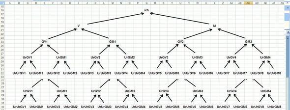 Stammbaum, Entwurf für Excel - (Excel, Word, Stammbaum)