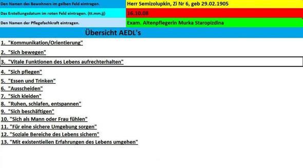 Startseite mit AEDL`s Auswahl - (Pflege, Demenz, Pflegeplanung)