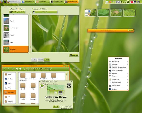 04 - (Windows XP, Linux, Ubuntu)