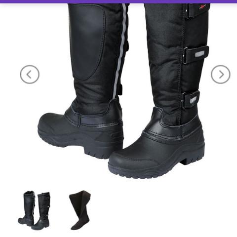 Winterreitstiefel - (Sport, Pferde, Schuhe)