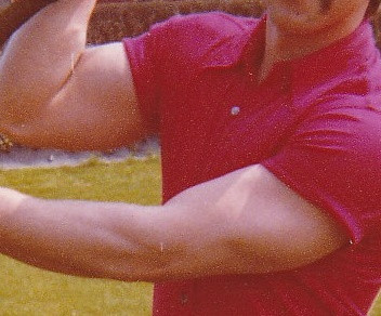 bizeps - (Training, Muskeln, Fitnessstudio)