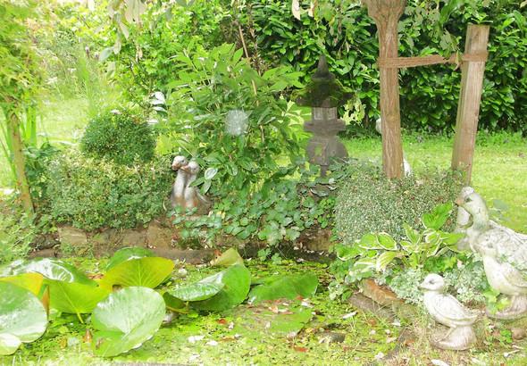 mitttlerer Teich - (klein, Teich, vorgarten)