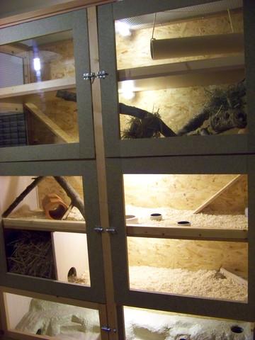 Degu-Käfig aus ehemaligem Kleiderschrank - (Haustiere, Käfig, Nager)