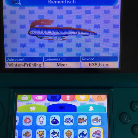 Riemenfisch - (Fische, Animal-Crossing, angeln)