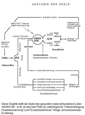 Freuds 3 Instanzen Modell  - (Psychologie, Familie, Traumdeutung)
