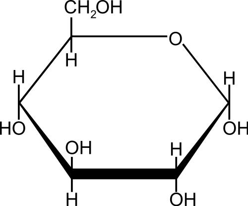Molekül: Glucose - (Bio, Bausteine von bio)