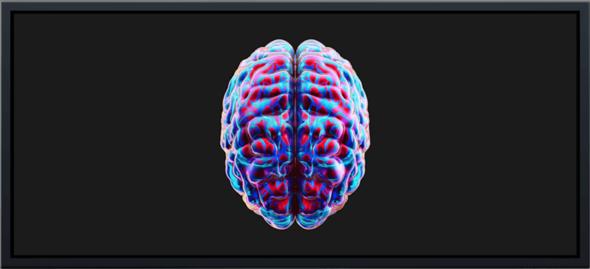 - (Kunst, Design, neurologe)