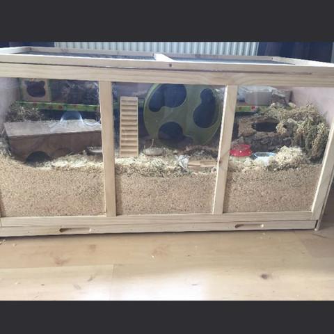 Mein Gehege  - (Tiere, Hamster, Stall)