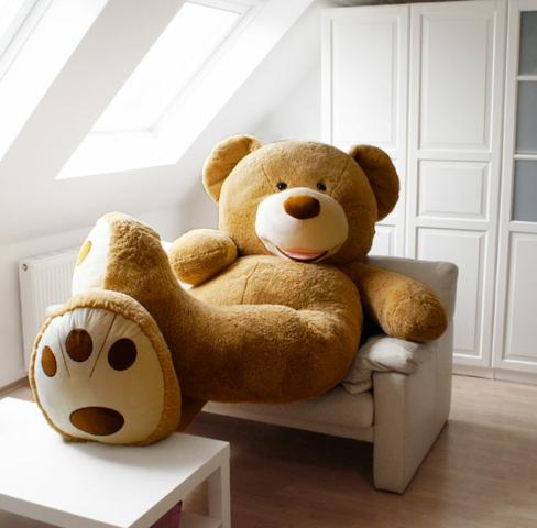 - (Teddy, xxl)