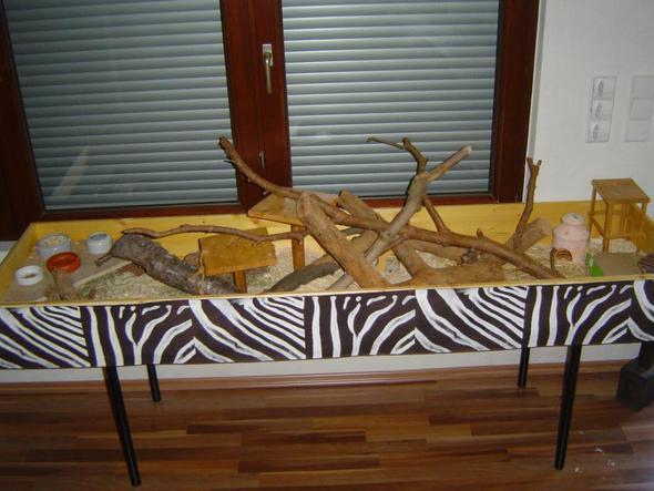 wie kann ich mir eine m useburg selber bauen tiere maus. Black Bedroom Furniture Sets. Home Design Ideas