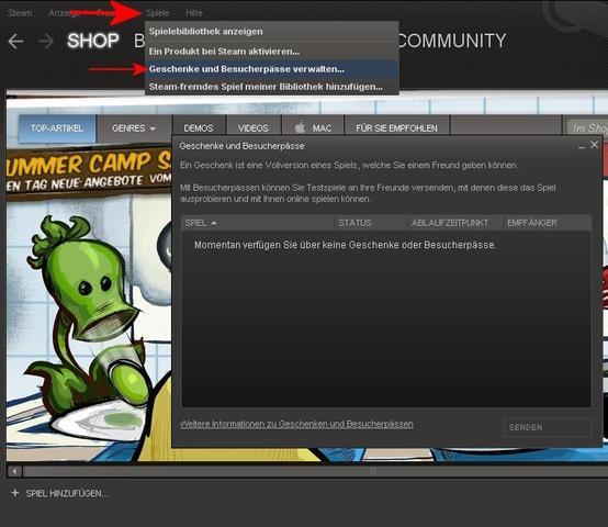 steam gekauftes spiel